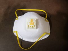3M™ Particulate Respirator 8511, N95 **one mask only**